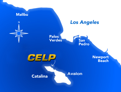 Celp_Flash_Map_Image