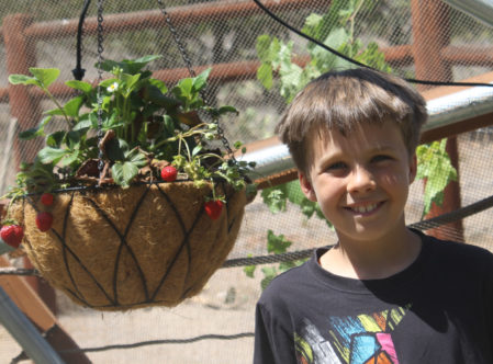 boy standing next to hanging plant
